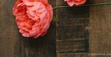 miaVILLA ♥ DIY Papierblumen / Entdeckt hier unseren schönsten Ideen um papierblumen selber zu basteln. Tolle DIY Inspirationen zum Nachmachen!