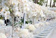 miaVILLA ♥ Diner en blanc / Ein Abend ganz in weiß. Das weltweite Sommer Event Diner en blanc begeistert die Menschen, die es stilvoll und kulinarisch lieben. Stilvoll und ganz in weiß wird der Abend draußen an einem schönen Ort verbracht.