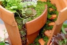 Garden Ideas / by janet bryant
