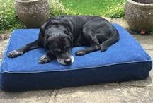 MEMORY FOAM DOG BEDS / Luxury Memory Foam Dog Beds in stylish and practical fabrics.