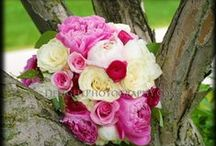 Wedding Flowers and Bouquets / Photography: DelightPhotography.com