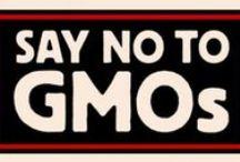 NO GMO'S / by Maria Hatzakis