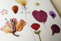 Flower project
