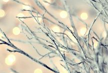 Winter * christmas