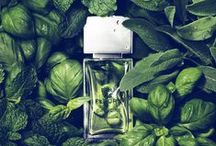 P E R F U M E   P R O J E C T / AS level graphics - nature inspired perfume bottle by YSL