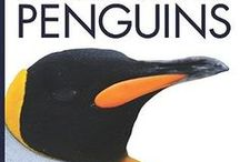 Penguins Early Elementary