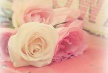 Mi lado rosa