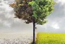 Our Changing Climate / Books and online resources about climate change