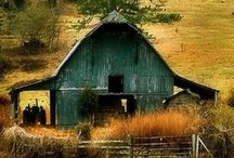 Old Barns and Farmhouses / by Ladybug Pinster