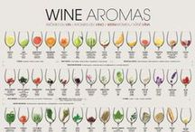 Wine Info / Fun facts and interesting information about wine, pairing, tasting and other good tidbits.