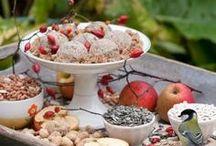 dieren in de tuin / vogelvoerbollen , vlinderstruiken, egelhuisjes