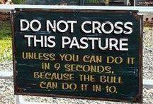 Crazy Signs