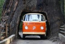 Stateside / Road Trip!