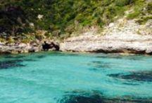 Corsica Vivila Adesso / 6 blogger si alterneranno alla scoperta della Corsica! Da Nord a Sud, dal mare alla montagna, tra artigiani e prodotti tipici della gastronomia Corsa.  Segui i viaggi sui social con #CorsicaVivilaAdesso