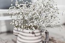 Kukat ja ruukut