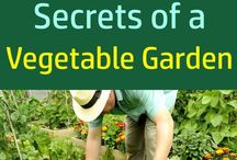 Gardening Well