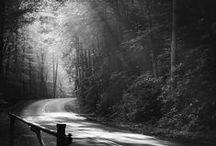 photography - landscape + more