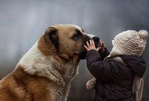 I love dogs / Cute, amazing friends.