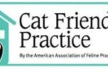 Cat Friendly Practice / For some cats and owners, a trip to the veterinarian may be a cause for stress, so one of the goals of the CFP program is to create a more calming environment.