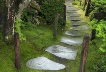 Paths...