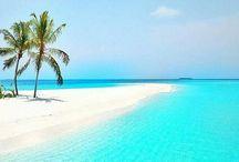 Amazing Beaches...