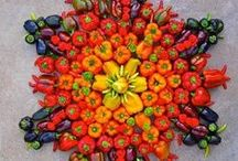 Frutas - Fruits / Todo lo que podemos hacer con las maravillosas frutas... / by Klaudia Alexandra Sindar Mirek