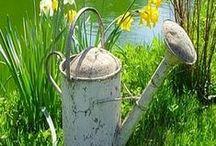 Au jardin / Chaque pomme est une fleur qui a connu l'amour. Félix Leclerc