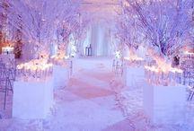 Wedding Plans ♥