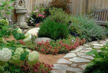 Gardening & Landscape / by Rod Watkins