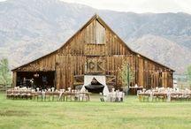 Wedding Stuffs / by Haley Nohl