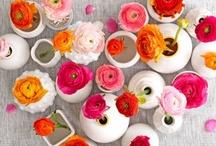 flowers / by Alyssa Riley