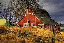American Barns /  a disappearing legacy / by Kathy Walker