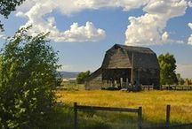 Barn Passion / you can't depend on your eyes when your imagination is out of focus. - Mark Twain / by Kathy Walker
