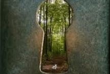 Doors of the world  / by Drea Crawford