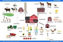 OGO - boerderij