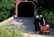 Amish & Mennonites... / by Joy Castello
