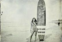 surf / aloha