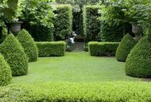 Garden Hedge Inspiration / Architectural gardening ideas using hedges. Topiary, clipped box, edges & garden rooms.