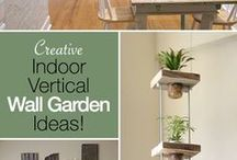 Indoor Gardening / Adding green-life to your living areas.