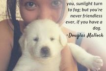 Dogs Are <3
