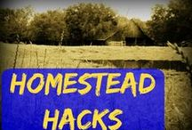 Homestead Hacks / Hacks To Save You Money & Keep Your Homestead Running Smoothly  #TaylorMadeRanch