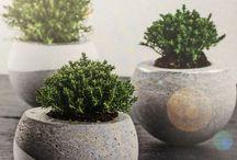Planters & Concrete