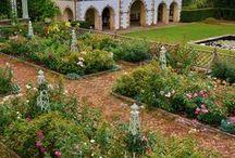 gardening / by Kasey Alger
