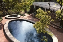 Swimming Pools / by Barker*Evans Landscape Architecture