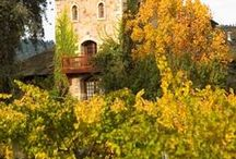 Vineyards and Wineries / Beautiful scenery in Napa and Sonoma