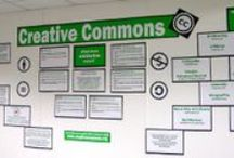 Displays and bulletin boards