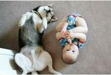 Kids and Pets / There is nothing more cute than kids and pets bonding together.