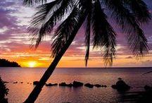 * Hawai * / Aloha , Dive in *