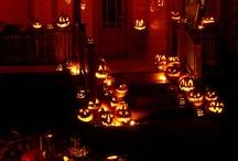 Halloween / by Heidi Macri