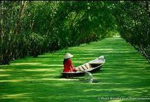 Voyage au Vietnam / Les plus belles photos de voyage au Vietnam